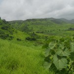 The Kharghar Hills – if you're in searches of a scenic spot…